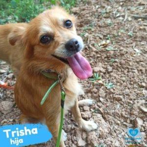 Trisha hija 8 años